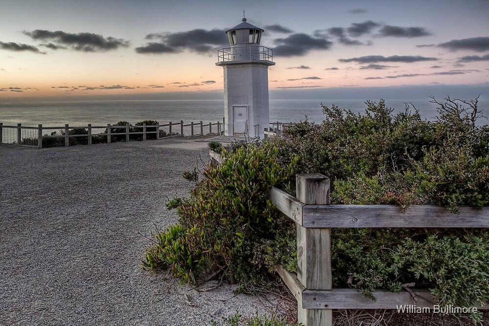 Always Vigilant • Cape Liptrap National Park • Victoria by William Bullimore