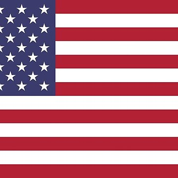 USA Flag American by OceanWolffe