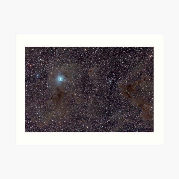 NGC 7023 - Iris Nebula Among Dust Art Print