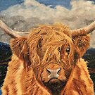 Highland Cow in Early Snow by EuniceWilkie