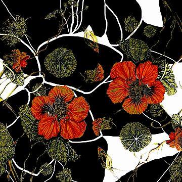 modern nasturtium by clemfloral
