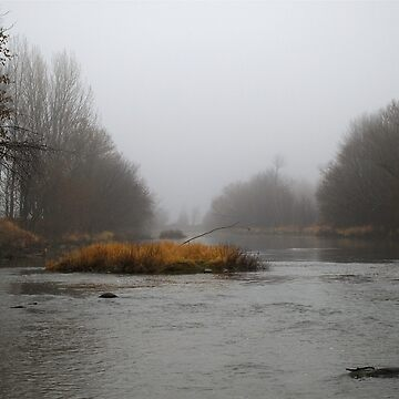Fog On Pike River by marchello