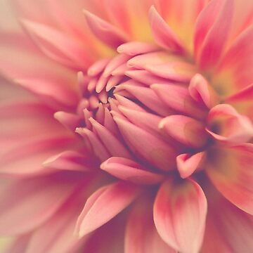 Cheerful by oliviastclaire