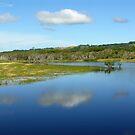 Reflections in Tallow Creek by byronbackyard