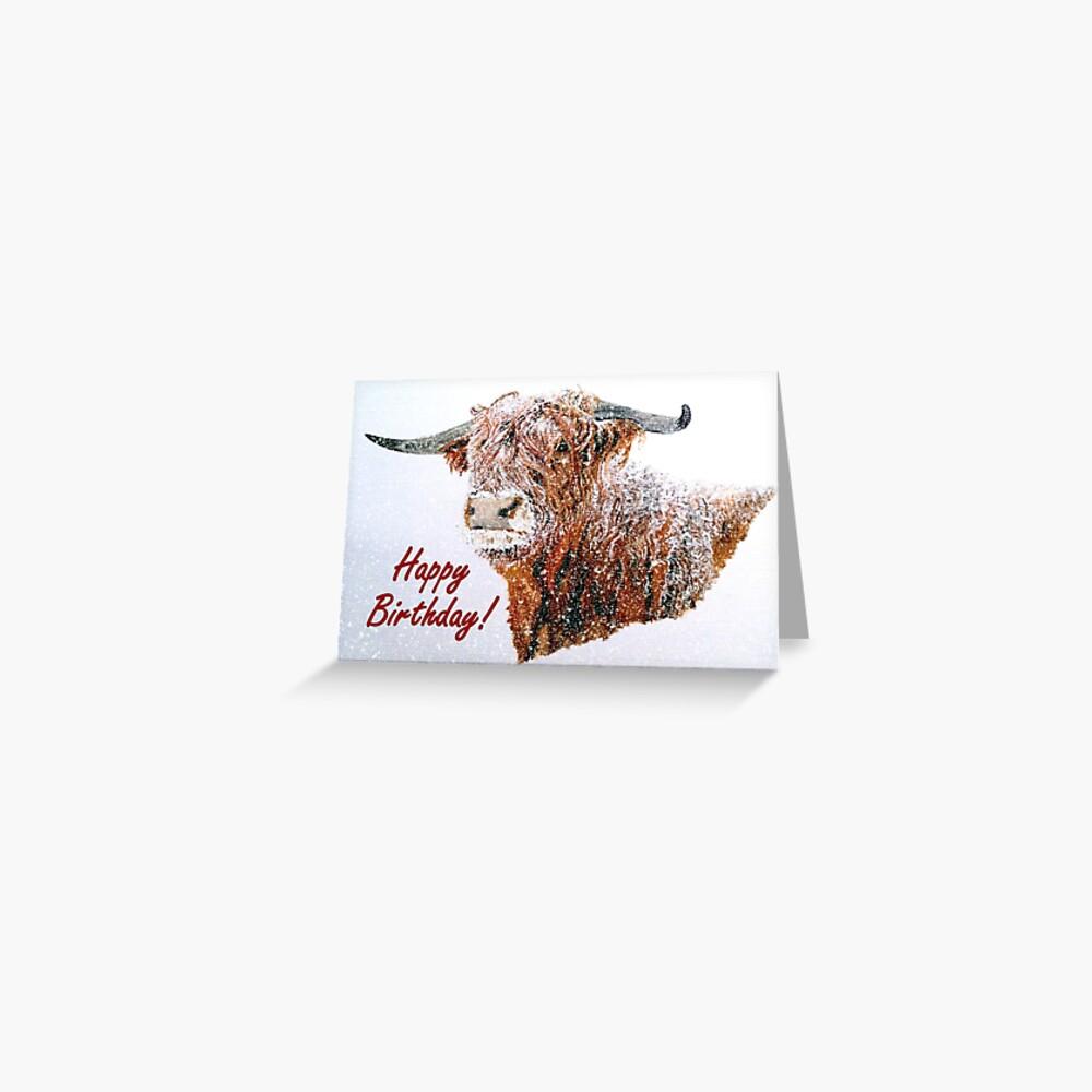 Snowy Highland Cow in Falling Snow Birthday Card Greeting Card