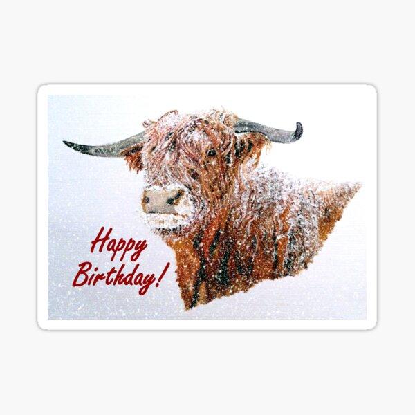 Snowy Highland Cow in Falling Snow Birthday Card Sticker