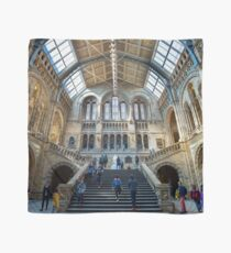 Natural History Museum Scarf