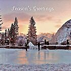 Winter Greetings ! by Nancy Richard
