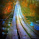 Suspension Bridge Ida Grove Iowa by Linda Miller Gesualdo