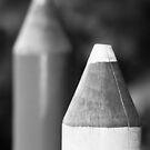Black & White Pencils by Wayne Gerard Trotman