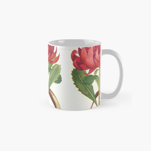 The Australian Flora in Applied Art - The Waratah (White) - Mug Classic Mug