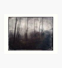 Tintype Trees Art Print