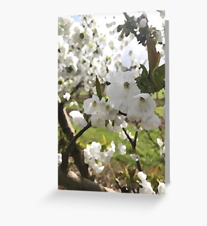 Hanami Greeting Card