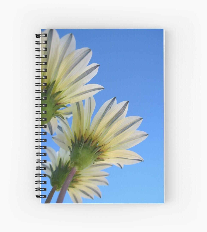 Summer Bloom by liewy