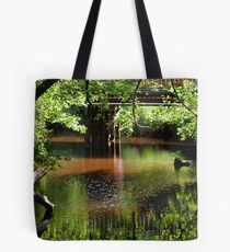 Murky, mineral-rich waters Tote Bag