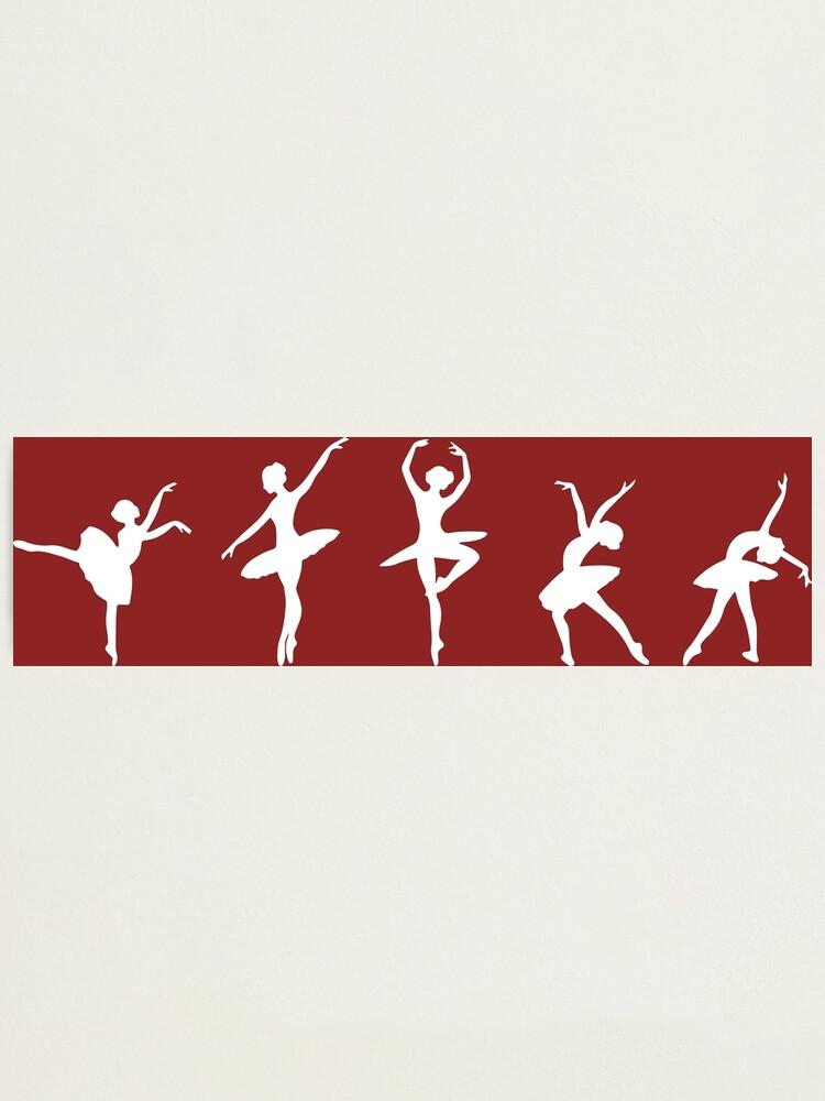 Alternate view of Ballet Evolution, Ballerina Dancer, Moves Artwork, Tshirts, Posters, Prints, Women, Men, Kids Photographic Print