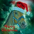 Horse Christmas card by Brian Tarr