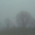 Fog by MariaVikerkaar