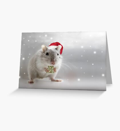 Here's a little Christmas gift for you xxx Greeting Card