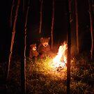 Deano Bears Bonfire Night by Dean Harkness