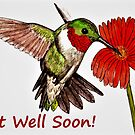 Humming Bird - Get Well Soon Card  by EuniceWilkie