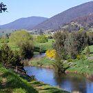 Goodradigbee River, Wee Jasper by Kate Howarth