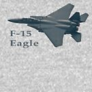 F-15 Eagle by Karl R. Martin
