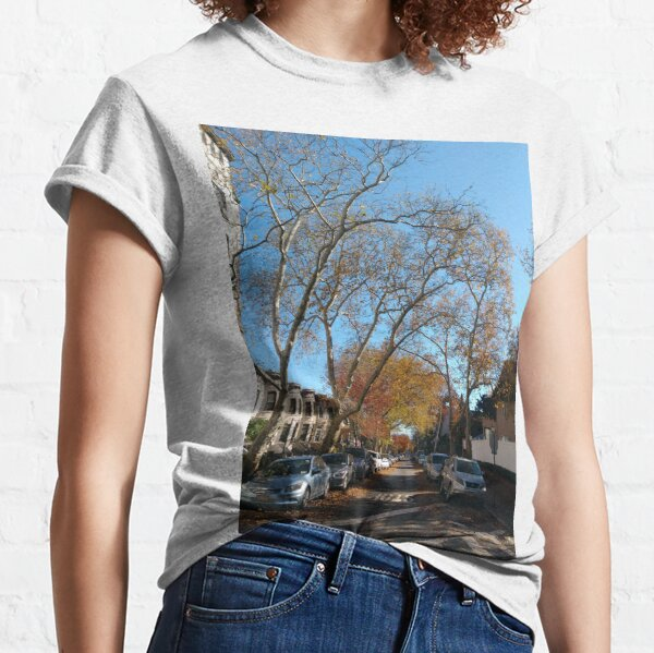 #tree #road #city #street #architecture #outdoors #landscape #house #travel #town #avenue #sky #horizontal #colorimage #builtstructure #naturalparkland #publicpark #nopeople #scenicsnature #day Classic T-Shirt