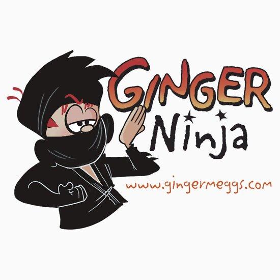 TShirtGifter presents: Ginger Ninja