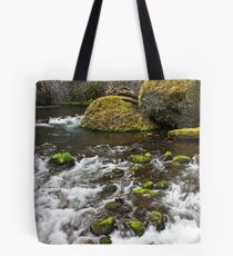 Wahclella Falls Run Off Tote Bag