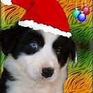 Jolly Jolly Christmas by Kylie Van Ingen