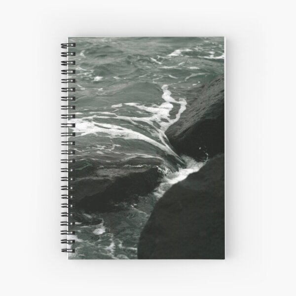 CLEANSING Spiral Notebook