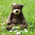 Deano Bears Daisy bear by Dean Harkness