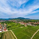 Perspective aerial view from drone to fields and meadows of Alsace by Alexander Sorokopud