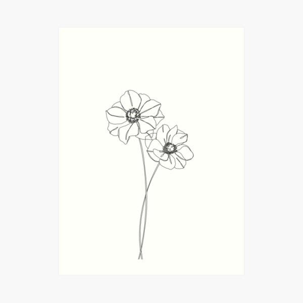 Botanical illustration line drawing - Anemones Art Print