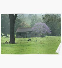 Purple Shack - Northern Rivers NSW Poster