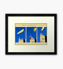 The locals of Lady Robinsons Beach  Framed Print