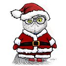 Super Puff Santa  by Christine Cholowsky