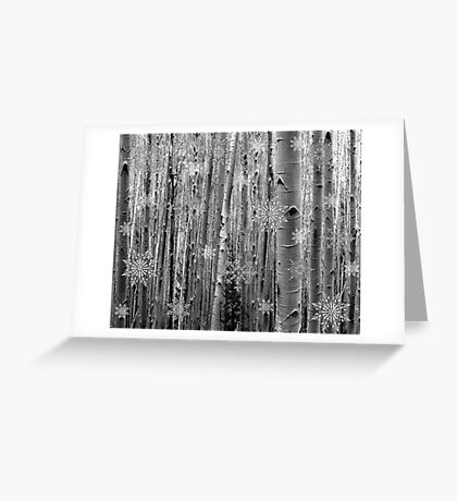 Aspens in the Snow Greeting Card