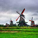 Zaanse Schans Windmills by Tom Gomez