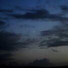 blue moon by jaffa
