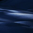 Night Blue Snow ... by Angelika  Vogel