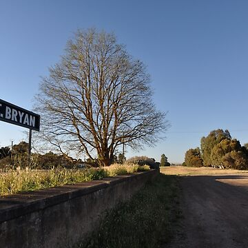 20181021 Old Railway Platform, Mount Bryan, South Australia by muz2142