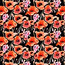 Bold Red and Pink Poppy Flowers on Black by Elaine Plesser