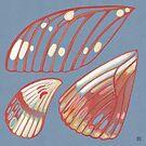 Regal Moth Wings by Evvie Marin