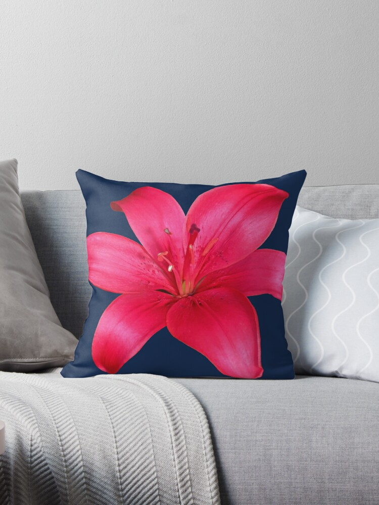 Red Garden Lily On Blue Background by hurmerinta