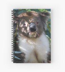 Koala Spiral Notebook
