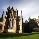 Ely Cathedral 2 by Michael Oubridge