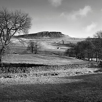 Pen-y-ghent From Horton by SteveMG