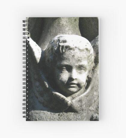 Angel 3 Spiral Notebook